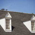 Can Paint Roof Shingles