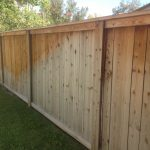 Fence Painting Refreshing Your Home Exterior Wilson