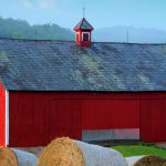 Here Why Barns Painted Red Business