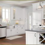 Maple Kitchen Cabinets Painted White Home Design