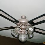 Painted Ceiling Fans