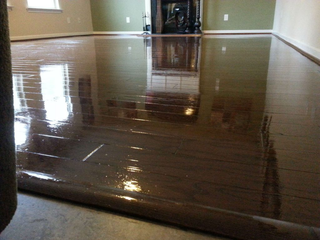 Painted Hardwood Floors Elegant Impression Traba