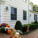 Painted Siding Wood Prices