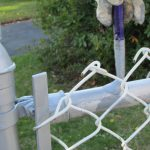 Painting Galvanized Pipes Hold Vinyl Coated Chain Link Fence Fred