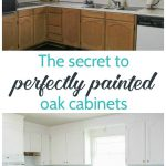 Painting Oak Cabinets White Amazing Transformation Lovely