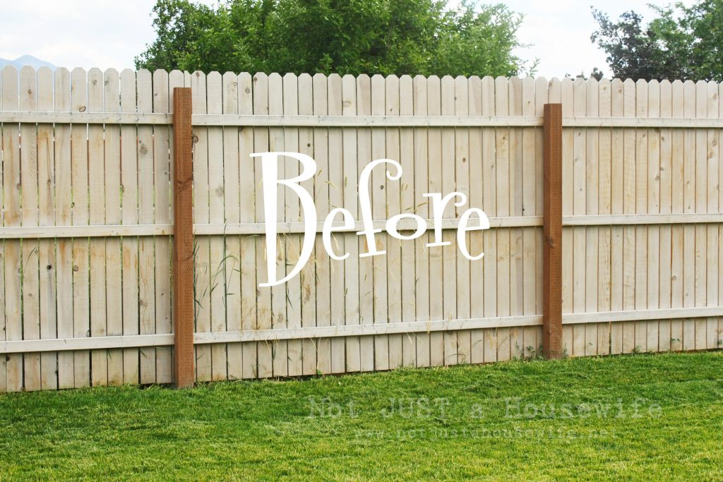 Planter Boxes Fence Stacy