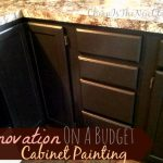 Renew Your Kitchen Cabinet Paint Diy Cheap New