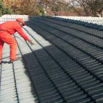 Roof Painting Services Cape Town Joburg