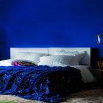 Royal Blue Painted Bed Room
