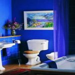 Small Bathroom Organization Ideas Cobalt Blue Interior Paint Color