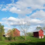 Synch Zing Why Barns Painted Red Sometimes White