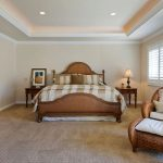 Tray Ceiling Home Design Ideas Remodel
