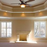 Tray Cieling Painting Ceiling Plus Ideass Interior