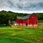 Why Barns Painted
