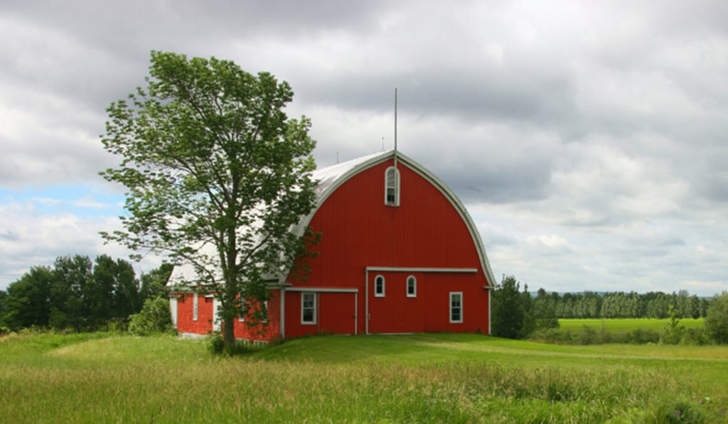 Why Barns Traditionally Painted